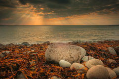 Spanish Point Sunset. West Clare Ireland Seaweed Rocks Wild Atlantic Way Stock Images