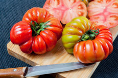 Spanish Raf tomatoes Stock Images