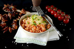 Spanish rice with grated cheddar cheese and spring onions Stock Photos