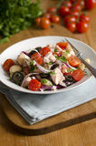 Spanish salad Royalty Free Stock Image