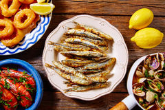 Spanish seafood tapas clams anchovies shrimps. Tapas spanish seafood clams shrimps calamari romana and fried anchovies fish Royalty Free Stock Photo