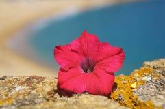 Spanish seaside Royalty Free Stock Image