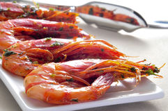 Spanish shrimps with garlic and parsley. Closeup of a plate with spanish shrimps cooked with garlic and parsley Royalty Free Stock Photography