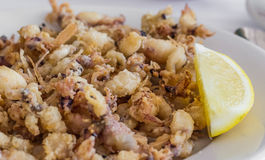 Spanish starter chopitos rebozados with small deep fried squid Stock Image