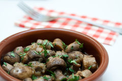 Spanish tapa casserole with mushrooms and parsley Royalty Free Stock Photos