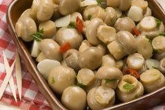 Spanish tapas. Garlic sizzled mushrooms Royalty Free Stock Photo