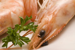 Spanish tapas. Shrimps in salt. Gambas saladas. White background. Typical appetizer. Selective focus. closeup Stock Image