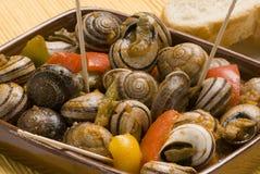 Spanish tapas. Snails in chili sauce. Stock Photos