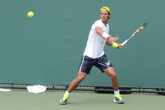 Spanish Tennis Legend Raphael Nadal. Rafael Rafa Nadal of Spain hitting a forehand during the Miami Open in Key Biscayne, Florida Stock Photos