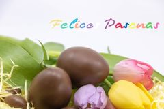 Spanish text Felices pascuas is Happy Easter written in Spanish very colorful to celebrate Easter royalty free stock photo