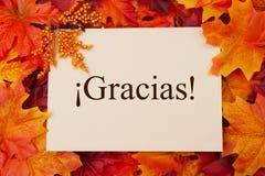Spanish Thank You Greeting Card