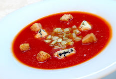 The Spanish tomato soup gazpacho Royalty Free Stock Image