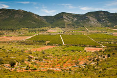 Spanish village. A Spanish village with fruit and vegetable plantations stock photography