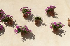 Spanish wall With flowers Andalusia. Spain Stock Photo