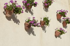 Spanish wall With flowers Andalusia. Spain Royalty Free Stock Image