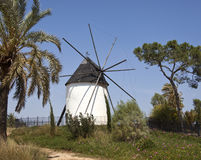 Spanish Windmill - Torre Pacheco - Murcia - Spain Stock Photo