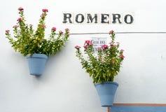 Spanje Cordoba de Terrassen royalty-vrije stock fotografie