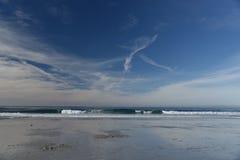 Spanjoren skäller stranden i Pebble Beach område, 17 mil drev, Kalifornien, USA Royaltyfria Foton
