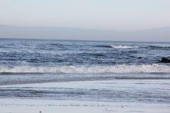 Spanjoren skäller stranden i Pebble Beach område, 17 mil drev, Kalifornien, USA Royaltyfri Fotografi