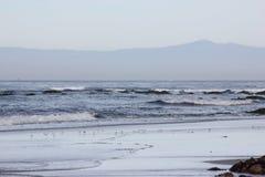 Spanjoren skäller stranden i Stillahavs- fjärd för Pebble Beach område i avståndet, 17 mil drev, Kalifornien, USA Royaltyfria Bilder