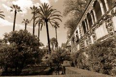 Spanjorträdgård med palmträdet Arkivfoto