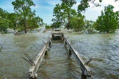 spanning ясности моста дуги конкретный Стоковое Фото