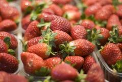 Spannkörbe Erdbeeren Lizenzfreies Stockbild
