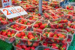 Spannkörbe Erdbeeren auf Anzeige an einem Markt klemmen im Regen fest Lizenzfreie Stockbilder