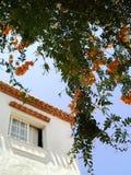 spansk bywhite för hus Royaltyfria Bilder