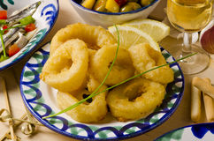 Spansk kokkonst. Fried Squid Rings. Calamares en la Romana. Royaltyfri Foto