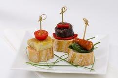 Spansk kokkonst. Tapas. Magasin av montaditos. Royaltyfri Fotografi
