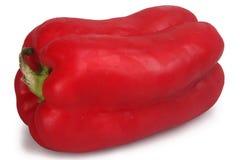 Spansk peppar royaltyfri foto