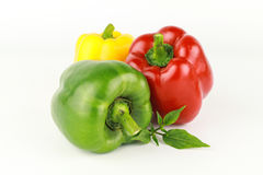 Spansk peppar eller paprika, söt peppar Fotografering för Bildbyråer