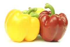 spansk peppar, söt peppar eller paprika Arkivfoto