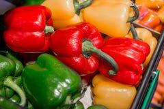 Spansk peppar som är nära upp för bakgrund royaltyfri fotografi