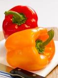 spansk peppar två Fotografering för Bildbyråer