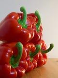 spansk pepparred Arkivbilder