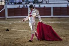 Spansk tjurfäktare Juan Jose Padilla som går hetsa mycket långsamt tjuren med kryckan i tjurfäktningsarenan av Pozoblanco arkivfoto