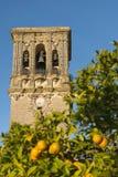 Spanska apelsiner och sätta en klocka på står hög Royaltyfria Bilder