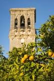 Spanska apelsiner och sätta en klocka på står hög Royaltyfri Foto