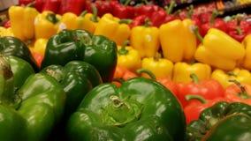 Spanska peppar i gräsplan, apelsin, gult och rött Royaltyfria Bilder
