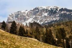 Spar houten bos en berglandschap met sneeuw stock fotografie