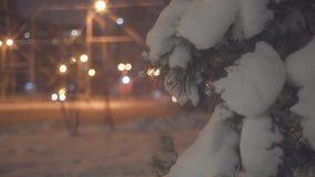 Spar tegen een achtergrond van het nachtverkeer stock videobeelden