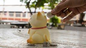 Spara pengar, katt sparar pengar, sparar pengarmyntet Fotografering för Bildbyråer