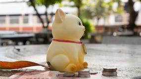 Spara pengar, katt sparar pengar, sparar pengarmyntet Arkivfoto