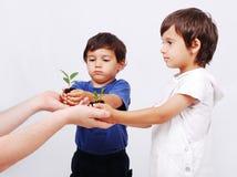 Spara vår jord, två pojkar med växten Arkivbild