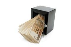 Sparade brasilianska pengar Royaltyfria Bilder