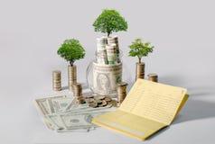 Sparande pengar för pengartillväxt Övrevisat begrepp för trädmynt av den växande affären fotografering för bildbyråer