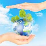 sparar det gröna planet för begreppet Arkivfoto