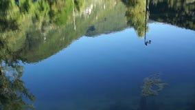 Sparato del lago scenico di estate Fondo unfocused vago della natura archivi video